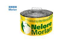 ARAME MORLAN FARPADO NELORE C/100M